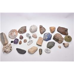 Selection of fossil and rocks including lapis, coral, petrified pieces, quartz etc.
