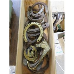 HORSESHOES AND BRASS PIECES