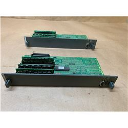 (2) Fanuc A16B-2200-0917 Graphic Option Board