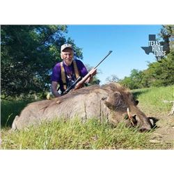 2-day Texas Wild Boar Hunt for Four Hunters