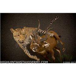 Taxidermy Work for a Life-Sized Leopard