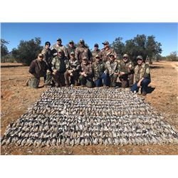 4-day/3-night Mexico Dove and Duck Hunt for Two Hunters