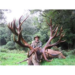 5-day New Zealand Red Stag Hunt and $1,000 Credit Towards Rusa Deer for Three Hunters and Three Obse