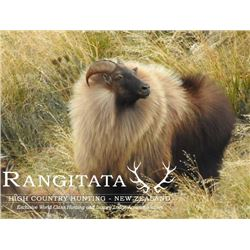 5-day New Zealand Himalayan Tahr Hunt for Four Hunters and Four Observers