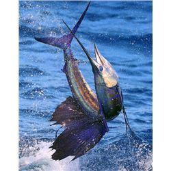 3-day/4-night Guatemala Sailfish, Marlin, Yellow-fin Tuna and Mahi-Mahi Fishing Trip for Two Anglers