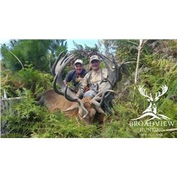 5-day New Zealand Red Deer Hunt for Two Hunters and Two Observers