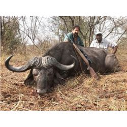 7-day Zimbabwe Cape Buffalo Hunt for One Hunter and One Observer