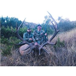 2-day Texas Red Stag and Boar Hunt for One Hunter and One Observer