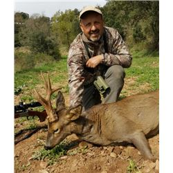 5-day Spain Roe Deer Hunt for One Hunter and One Observer