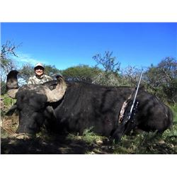 5-day Argentina Gold Medal Water Buffalo Hunt for Two Hunters