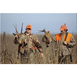 1-1/2 day Nebraska Pheasant and Quail for Two Hunters
