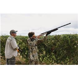 3-day Argentina Dove Shoot for Four Hunters