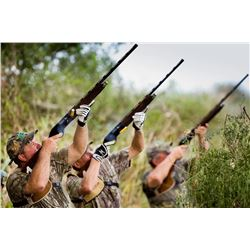 3-day Argentina High Volume Dove Hunt for Four Shooters