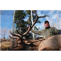 5-day Colorado Rocky Mountain Elk, Rocky Mountain Mule Deer and Black Bear Hunt for One Hunter and O