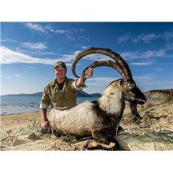 8-days/ 11 nights, Greece Kri Kri Ibex and European Mouflon for Two Hunters and Two Observers with s