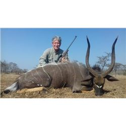 7-day Zululand, South Africa Nyala and Plains Game Hunt for Two Hunters and Two Observers