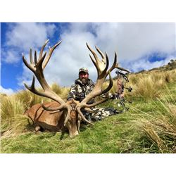 5-day New Zealand Red Stag Hunt up to 400 SCI for Two Hunters and a $1000 Credit Towards Tahr or Cha