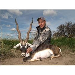 5-day Argentina Gold Medal Blackbuck Hunt and High-Volume Dove Shooting for Two Hunters
