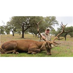 5-day Spain Red Deer Hunt for One Hunter and One Observer