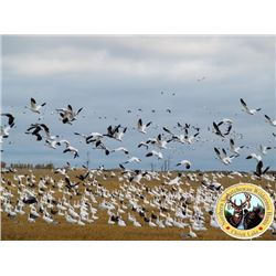 3-day Saskatchewan Waterfowl Hunt for Four Hunters