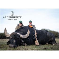 5-day Argentina Silver-Medal Water Buffalo Hunt for Three Hunters