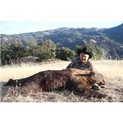 4-day California Black Bear Hunt for One Hunter