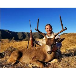 5-day California Black-tailed Deer Hunt for One Hunter and One Observer