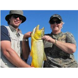 4-Day Dove and Dorado Cast and Blast Trip for Four Hunters