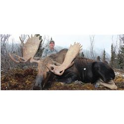 10-day Western Canada Moose Hunt for One Hunter