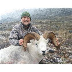 10-day Yukon Dall Sheep or Fannin Sheep Hunt for One Hunter