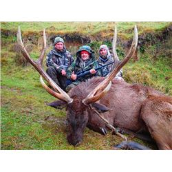5-day New Zealand Sambar and Rusa Deer Hunt for Two Hunters