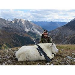 10-day British Columbia Mountain Goat Hunt for One Hunter