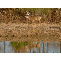 2-day Alabama Southeastern White-Tailed Deer Hunt for One Hunter and One Observer