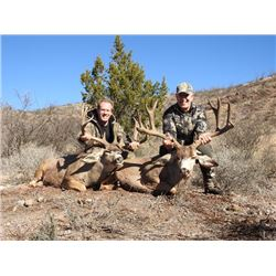 5-day Mexico Desert Mule Deer Hunt for One Hunter and One Observer