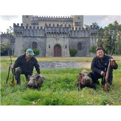 5-day Italy Wild Boar Hunt for Two Hunters and Two Observers