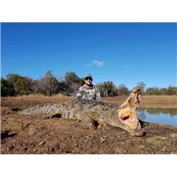 7-day South Africa Nile Crocodile and Sable Hunt for Two Hunters and Two Observers