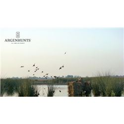 4-day Argentina Duck Hunt for Four Shooters