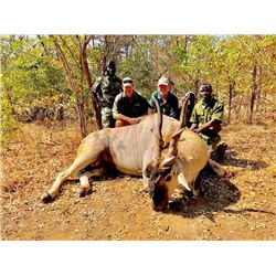 7-day Zimbabwe Livingstone Eland Hunt for One Hunter and One Observer