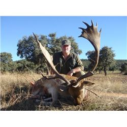 5-day Spain Iberian Mouflon or European Fallow Deer Hunt for Two Hunters and Two Observers