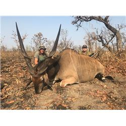 13-day Cameroon Lord Derby Eland, Buffalo and Antelope Hunt for One Hunter and One Observer