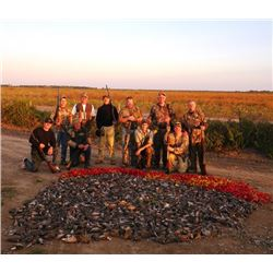 5-day Argentina Dove, Pigeon, Partridge and Duck Hunt for Eight Shooters