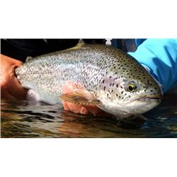 7-day British Columbia Lodge-Based Fly Fishing Trip for Two Anglers