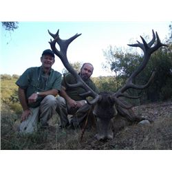 5-day Spain Red Deer or Roe Deer Hunt for Two Hunters