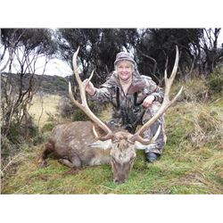 5-day New Zealand Sika Deer Hunt for Two Hunters and Two Observers
