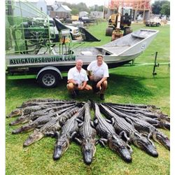 2-day/1-night Louisiana Alligator Hunt and Charter Fishing for One Hunter and One Observer