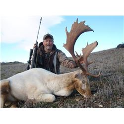 5-day New Zealand Fallow Deer Hunt for Two Hunters