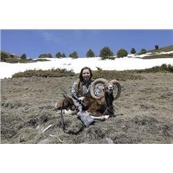 5-day Spain Free-Range Iberian Mouflon for One Hunter and One Observer