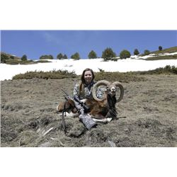 5-day Spain Free-Range Iberian Mouflon for One Hunter and One Observer