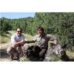 3-day Turkey Anatolian Wild Boar Hunt for One Hunter and One Observer