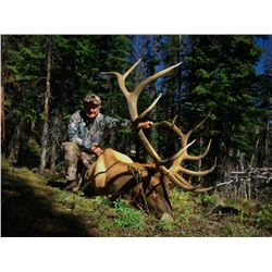 3-day Wyoming Rocky Mountain Cow Elk Hunt for One Hunter